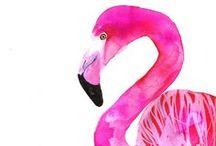 flamingo <3 love