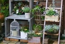 Grow Your Own / Now that I'm in a flat with my boyfriend, I miss the garden at my parents house a crazy amount. So I'm working on getting some planters for outside my front door, and in the meantime, here's some ideas!