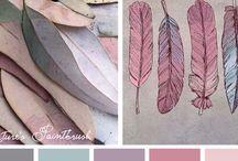 Colors Series