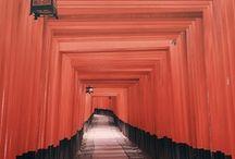 Japan ! / ikebana  bonsai  washi  origami utsuwa...etc