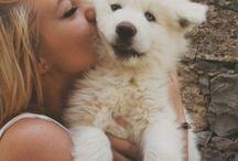 Animilia / animals love humans more then humans love humans / by Soraya Patsalas