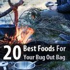 SHTF / SURVIVAL BLOG / Learn how to survive when the SHTF & Link to SurvivalFoodNow.com's FUGITIVE* SHTF/SURVIVAL BLOG!
