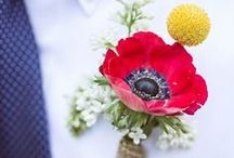 Wedding & Poppy /