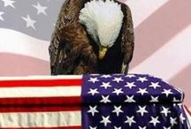 Branches of service / Our protectors and all our veterans thank you all and God bless  / by Shirley Bell