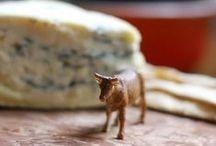 Cheeeeese ! / Du fromage, des fromages, et même des faux-mages !