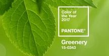 PANTONE COLOUR OF THE YEAR 2017 / Pantone have announced that the colour of the year for 2017 is Greenery, a zesty yellow-green. Check out all our favourite pins for ideas on how to add this bright colour to your own home right now.