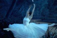 Ballet / by Tatiana Zlobina