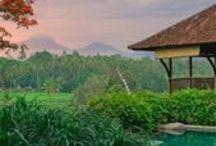 Ubud Villas / Villas in Ubud, Bali, Indonésia