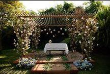 Wedding - Amanda