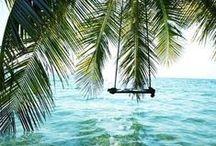 • summer & sea •