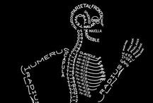 el cos humà / by Mercè