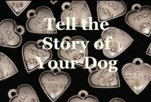 Charm Photo Bracelets / Tell the story of your dog with a whimsical mix of Picture and Candy Heart Zelda's Song charms, in one of 5 different styles!