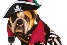 Haunting Halloween Pet Costumes / It's time to dress your best friend for Halloween.... Enter Halloween Pet Costume Hallow...