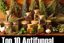 Anti-fungal foods and cures... / Did you know that cancer, eczema, candida and so on, ALL are caused by fungal infektions?  I didn't; but it make sense... coorelates with my own expirences...!