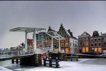 Wonen in Haarlem / Alles over wonen in Haarlem