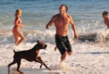 Tips for Vacation with Your Dog / Helpful hints and recommendations to make vacation fun, safe and enjoyable for you and your dog!