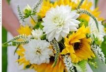 Sunflower / decoration