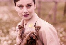 Audrey Hepburn and dog
