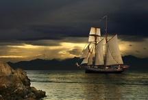 Setting Sail / by Carol Shepko