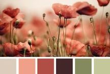 COLOR INSPIRATION / by LindaKay Pardee