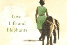 Elephants are special / by Robyn Whitelake