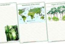 Rainforest Unit Study