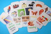 5 Senses Activities & Printables