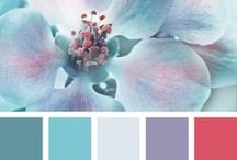 Colour Palettes To Die For!