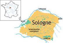 La SOLOGNE - The Sologne region near the loire valley / La Sologne est une région naturelle forestière française située en région Centre sur 3 départements, le Loir-et-Cher, le Loiret, le Cher et comprise dans la boucle de la Loire