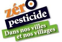 """Objectif Zéro pesticide dans nos villes et villages - Challenges """"zero pesticide"""" / Avoir pour objectif de suivre et de proposer des améliorations concernant les projets menés par Sologne Nature Environnement dans le cadre notamment de la réduction des pesticides mais plus globalement dans la gestion au naturel des espaces publics et privés.http://www.sologne-nature.org/l-association/adh"""