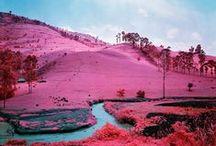 Colour / Colour mood inspiration