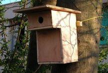 Nichoirs pour petits oiseaux / Objectif : « Accueillir un plus grand nombre d'oiseaux  proches de chez nous et pérenniser le patrimoine faunistique local», explique-t-on du côté de Sologne Nature Environnement