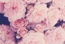 #Floral world!