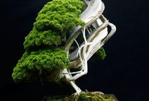 Zen Art of BONSAI