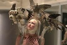 Alexander McQueen / by Tatiana Gluhova