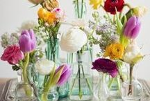 fresh blooms / pretty petals, fresh blooms puts a smile on anyone's face