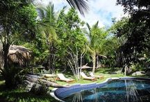 Butterfly House Bahia / Our garden, our rooms, our spaces and our surrounding environment.