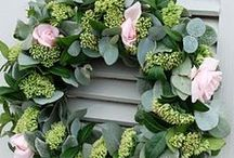 Eucalyptus wreaths / Eucalyptus