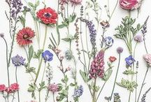 Botanical fabric wallpaper / Fabrics and wallpapers with botanical art, floral designs and nature themese