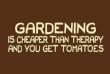 Green Fingers / by DiningIn.com (DiningIn)