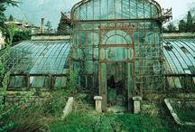 Gardens / by Helena Rosengren