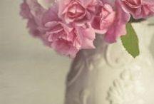 ~ Flowers in Vases ~