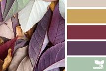 Color Charts / by Kimmi Rupp