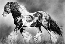 ~ Art - Horses  ~