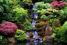 Beaux jardins / Parcs, jardins privés, tous au jardin