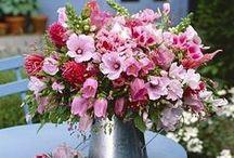 Bouquets / Profusion d'idées, de formes et de couleurs