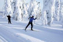 Talvi Joulu / Ripaus valkeaa taikaa Ihanaa joulun aikaa