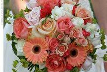 Flowers,Flowers / by Gloria Alvarez
