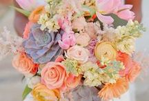 Bridal Bouquets / Beautiful bouquets for the bridesmaids and bride.