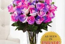 UltimateRose Best Sellers / From our 5 foot roses to our multi-colored roses, here are some of the most popular items from TheUltimateRose.com. Send your loved one a bouquet today!